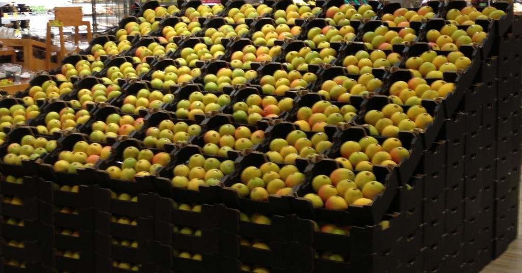 mango_tray_bulk_order